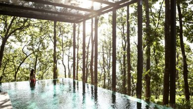 Seven inspiring wellness travel trends taking off in 2020
