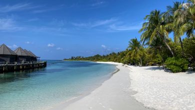 Maldives offer vacationers vaccines on arrival
