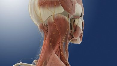 Active occipital nerve stimulation can reduce the aversive effects of chronic migraines
