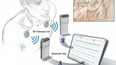 Researchers wirelessly record the activity of the human brain during normal life activities