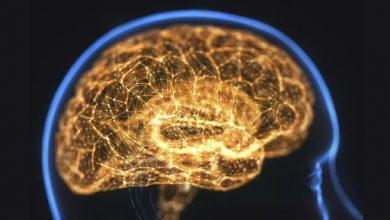 New Glycine Transporter Inhibitor Receives Breakthrough Tx Status for Cognitive Impairment with Schizophrenia