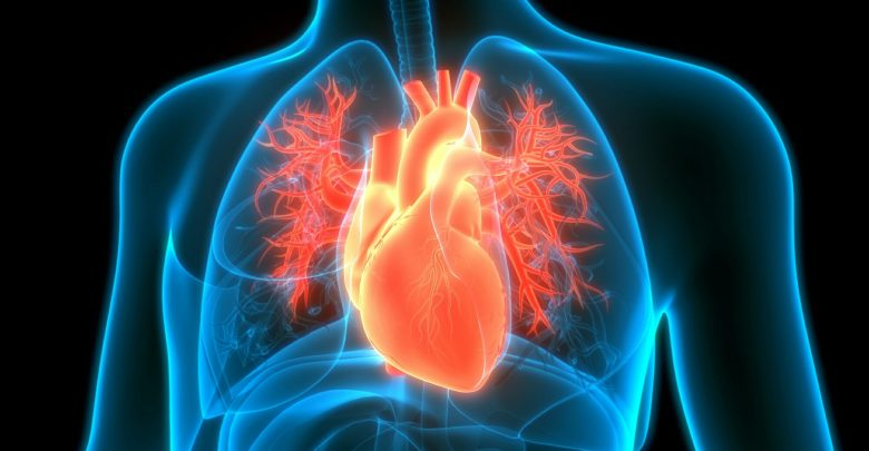 Elective revascularization reduces cardiac mortality in CHD patients