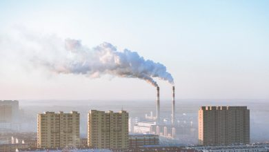 Parkinson's Disease Associated with Exposure to Nitrogen Dioxide Air Pollutants