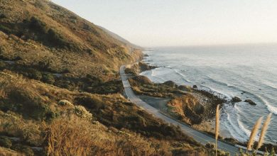 Plan a coastal road trip |  Gwinnett Daily Post Travel