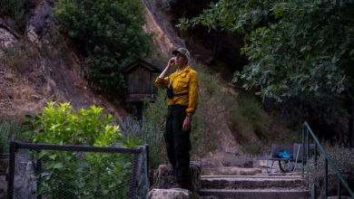 Tassajara Fire Crew consisting of Zen monks defend the monastery from the willow fire