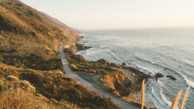 """Plan a coastal road trip along the Pacific Coast Highway """"America's Highway"""""""