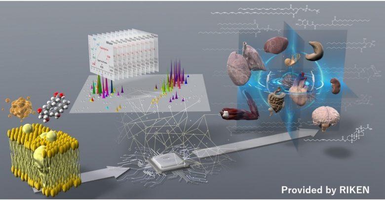 Demystifying the fat world of lipids