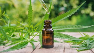 Study suggests that hemp extract is an effective aid in weight loss