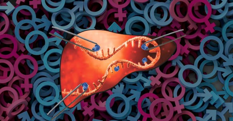 m6A Modifications Attaching to RNA in Liver