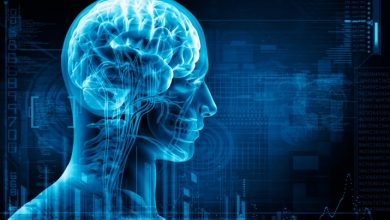Hyperuricemia, gout do not increase the risk of dementia