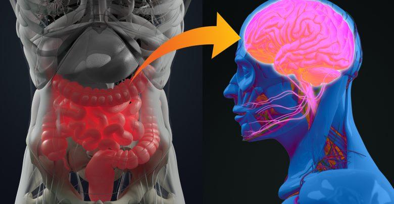 Study shows probiotics relieve depression and improve sleep