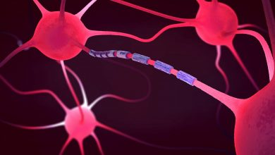 Structural, functional MRI interventions improve the prediction of long-term worsening of MS