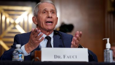 Pfizer Covid booster shots likely to be ready by September 20th, says Anthony Fauci