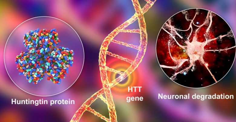 Therapeutic development for Huntington's disease has largely focused on small molecules and antisense oligonucleotides (ASO).