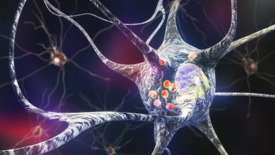 Study Identifies New Genes Associated with Higher Risk for Parkinson's Disease